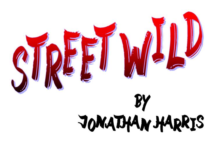 Street Wild Font