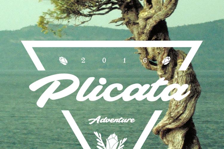 Plicata Font