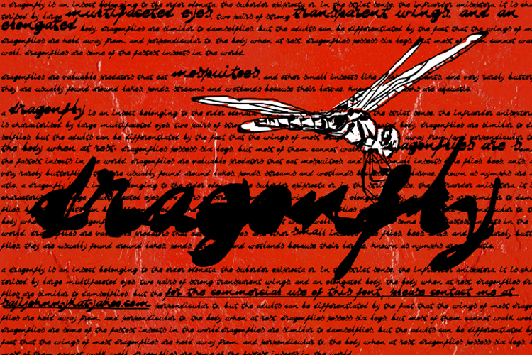 DRAGONFLY saji Font
