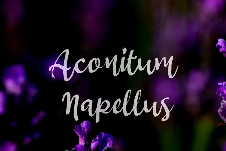 a Aconitum Napellus Font