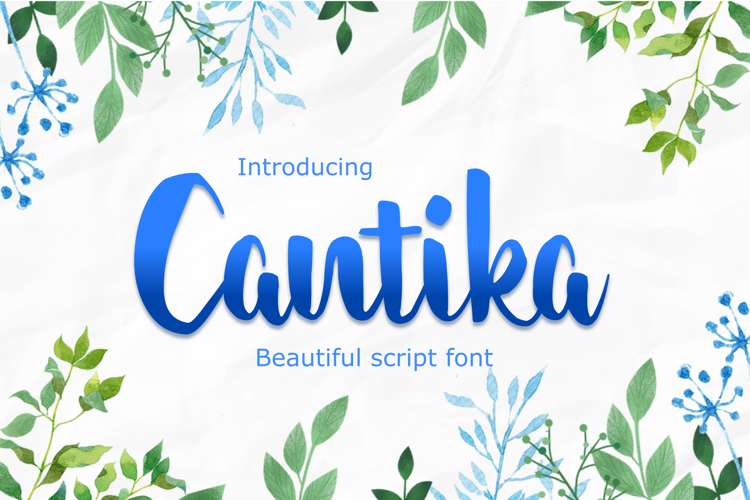 cantika Font