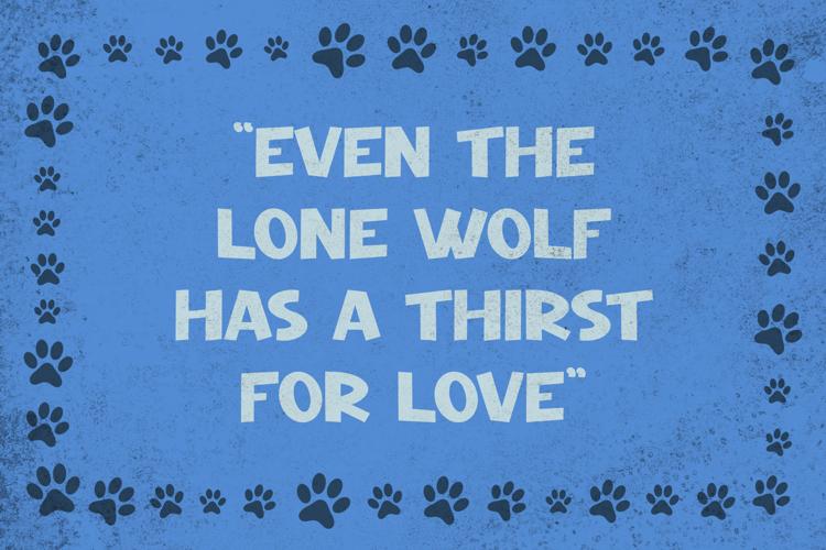 Night Wolf Font