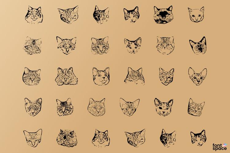 Kitty Print AOE Font