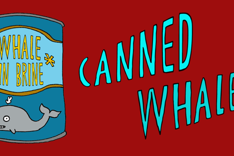 DK Canned Whale Font