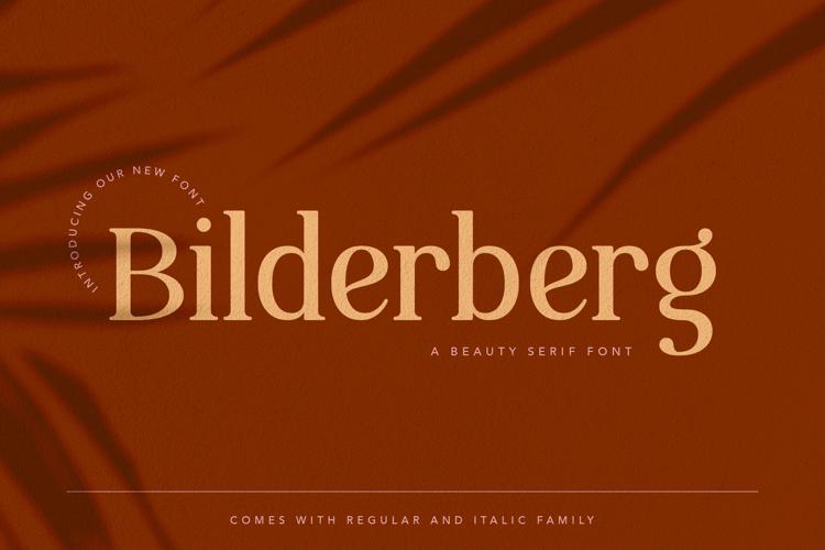 Bilderberg Font