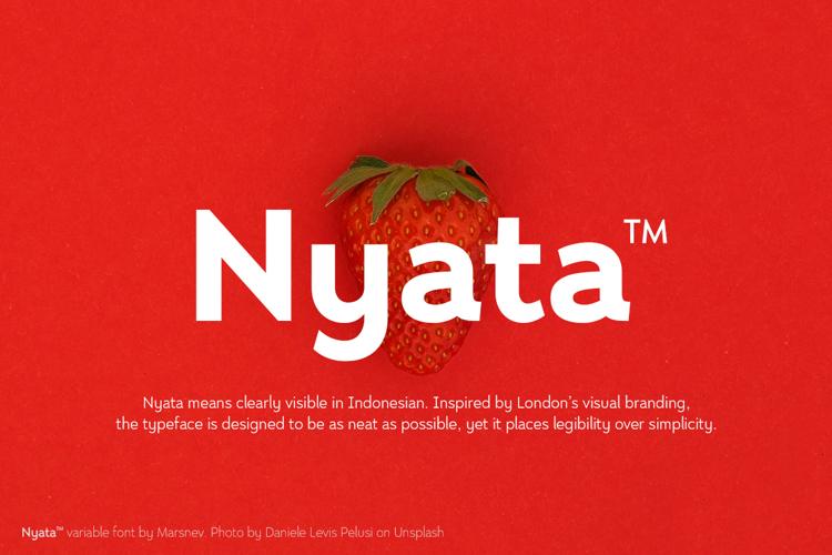 Nyata FTR Font