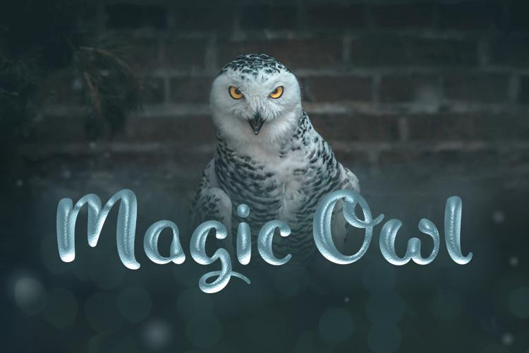 Magic Owl Font
