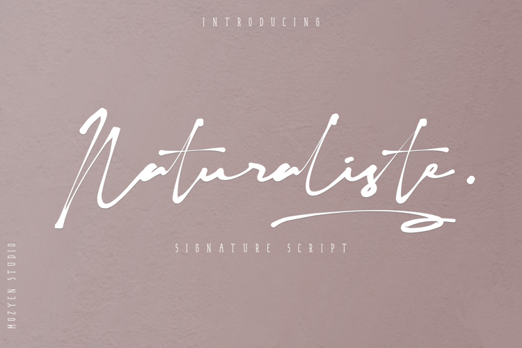 Naturaliste Font