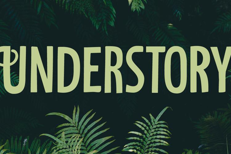 Understory Font