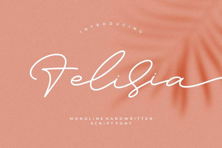 Felisia Font