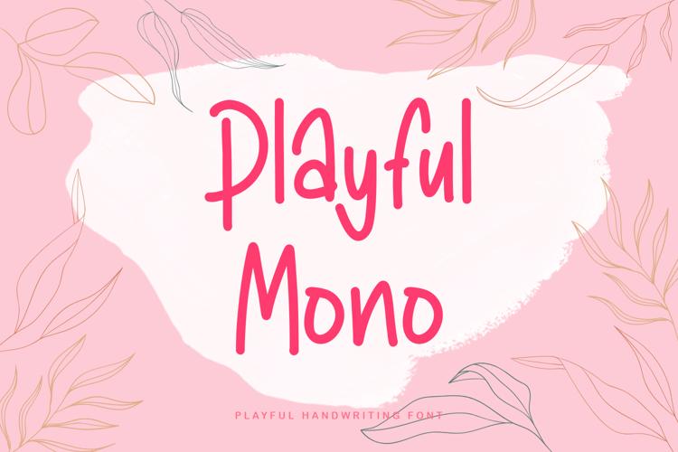 Playful Mono Font
