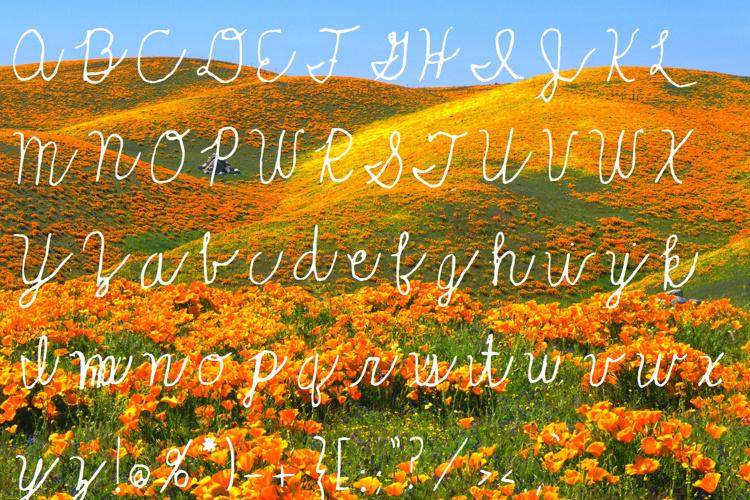Rolling_Hills Font