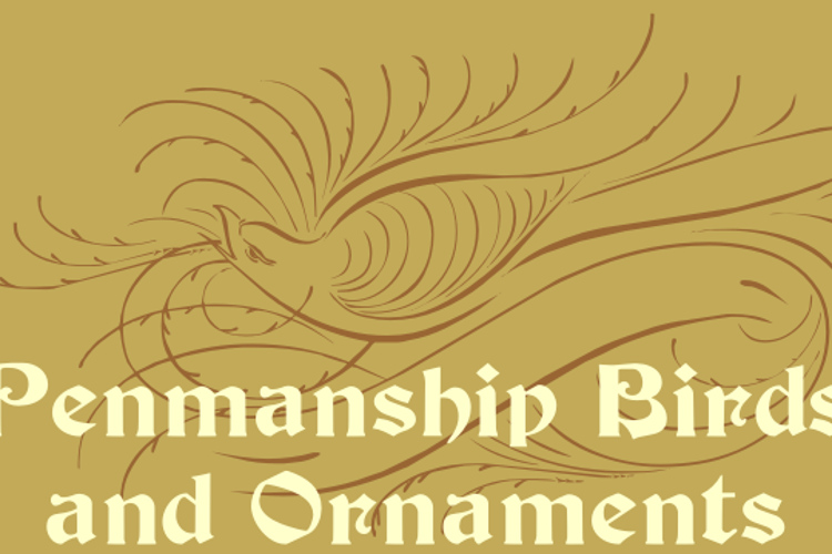 Penmanship Birds and Ornaments  Font