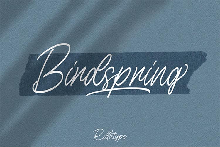 Birdspring Signature Font