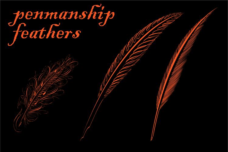 Penmanship Feathers Font