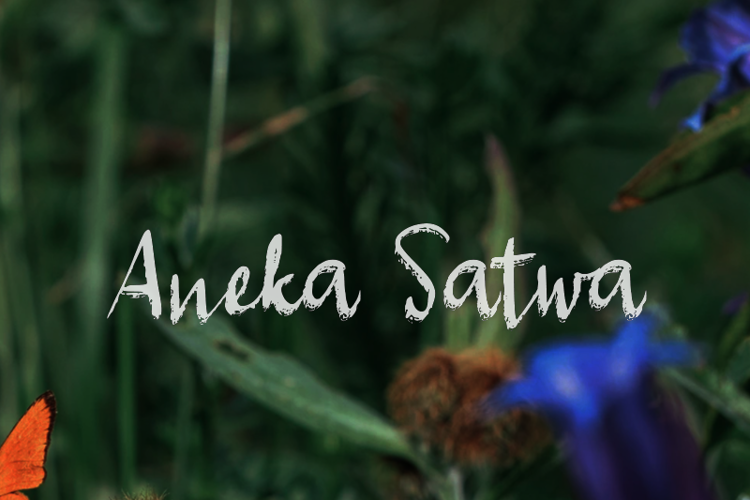 a Aneka Satwa Font