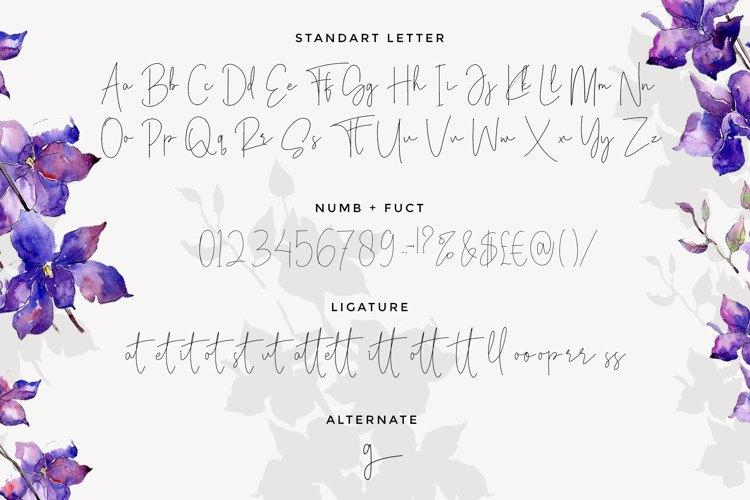 Viollet Signatture Font