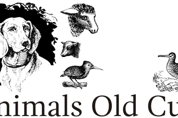 Animals Old Cuts Font