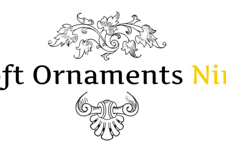 Soft Ornaments Nine Font