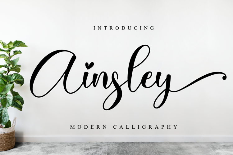 Ainsley Font