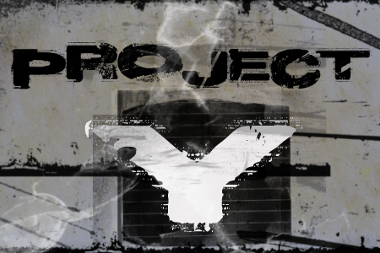 Project Y Font
