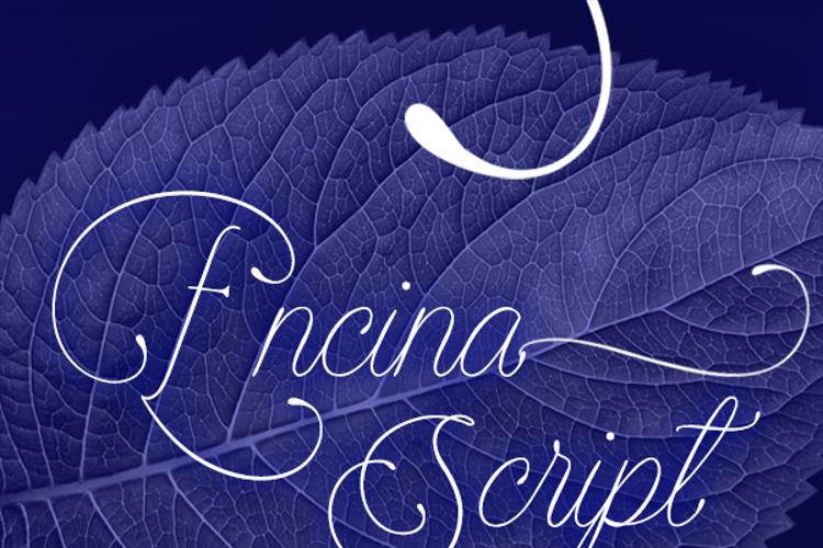 Encina Script Font