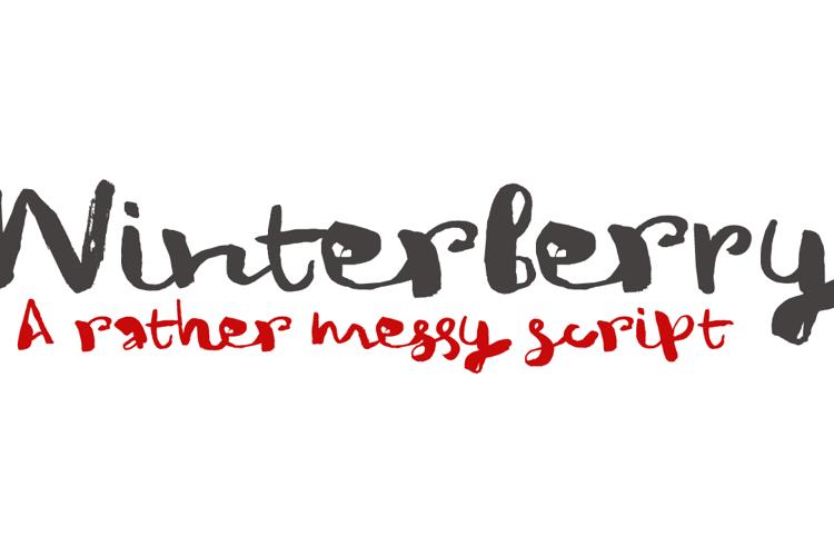 DK Winterberry Font