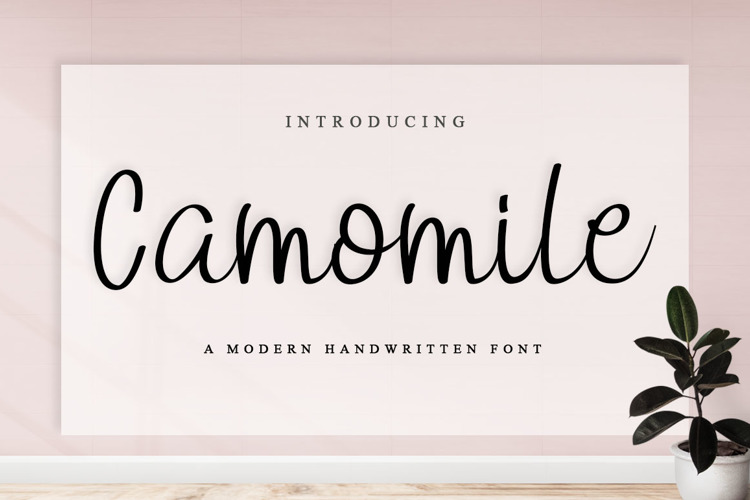 Camomile Font