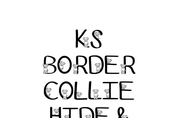 Ks Border Collie Font