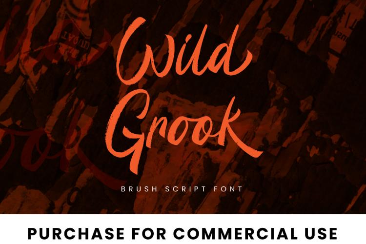 Wild Grook Font
