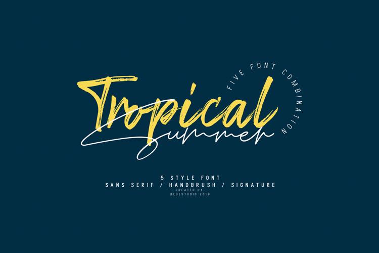 Tropical Summer Brush Font