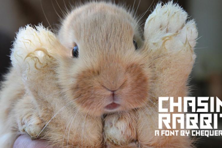 Chasing Rabbits Font
