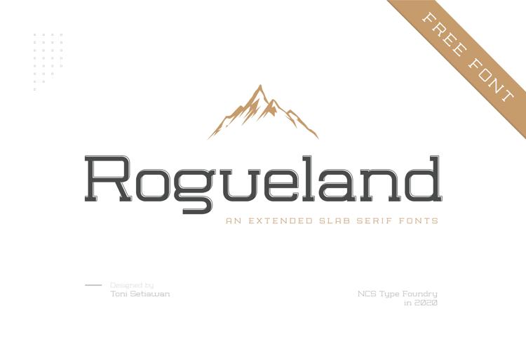 NCS Rogueland Slab Font