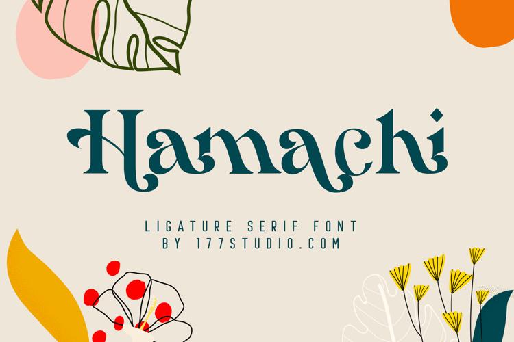 Hamachi Font