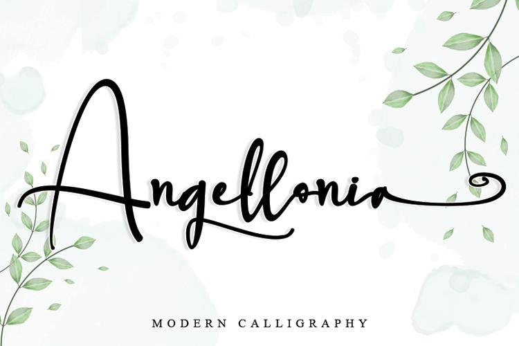 Angellonia Font