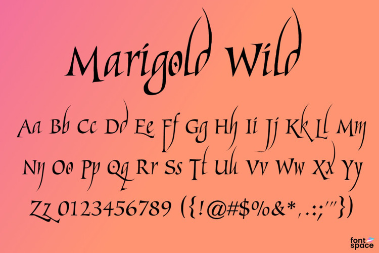 Marigold Wild Font