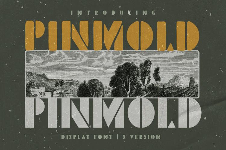 Pinmold DEMO Font