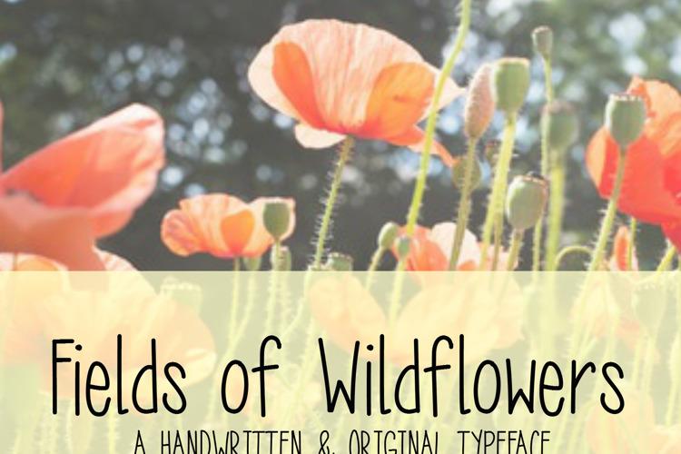 MRF Fields of Wildflowers Font