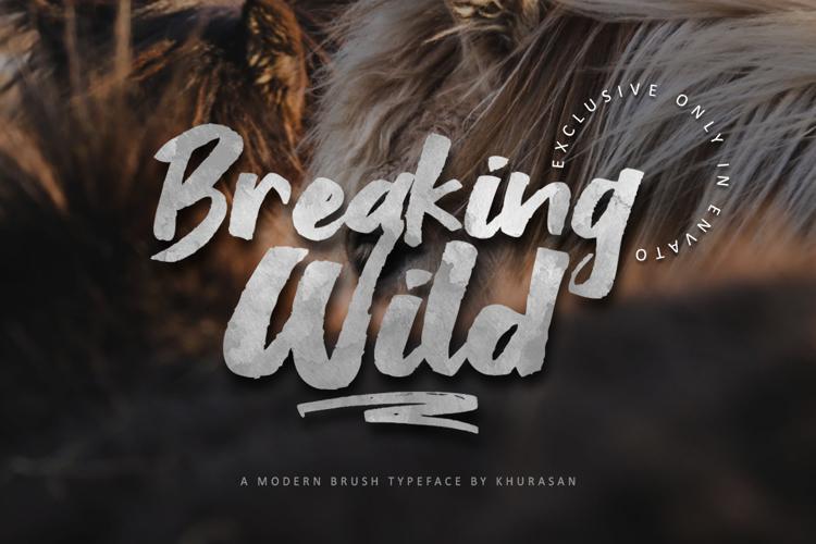 Breaking Wild Font