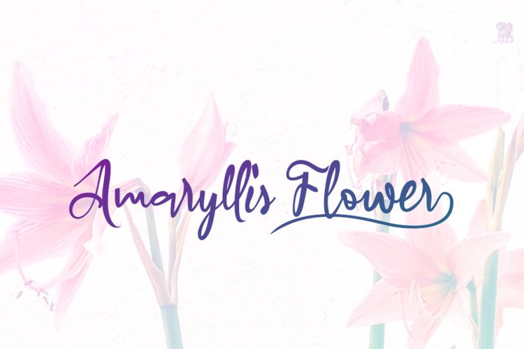 a Amaryllis Flower Font