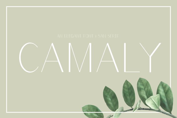 Camaly Font