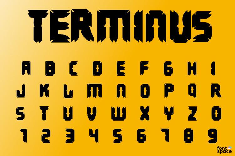 Terminus Font