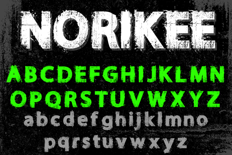 NORIKEE DEMO Font