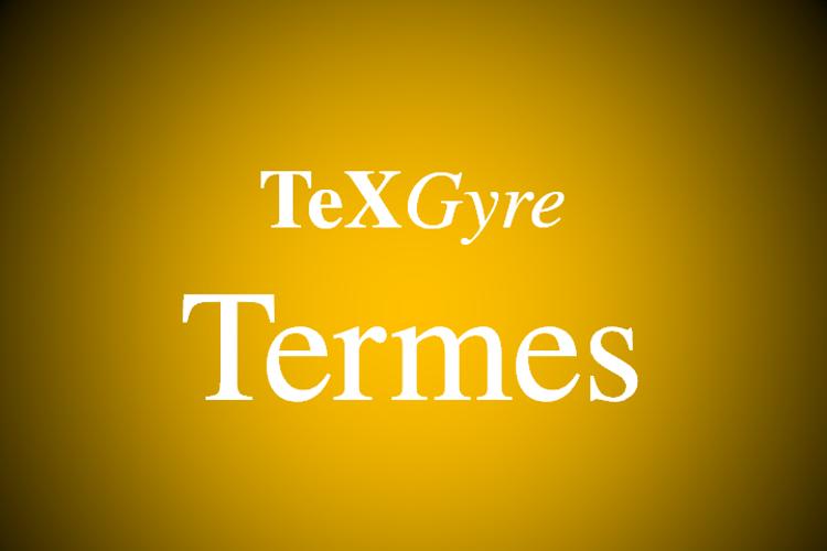TeXGyreTermes Font
