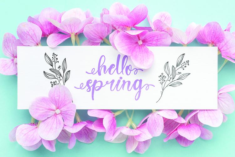Spring Heart Font
