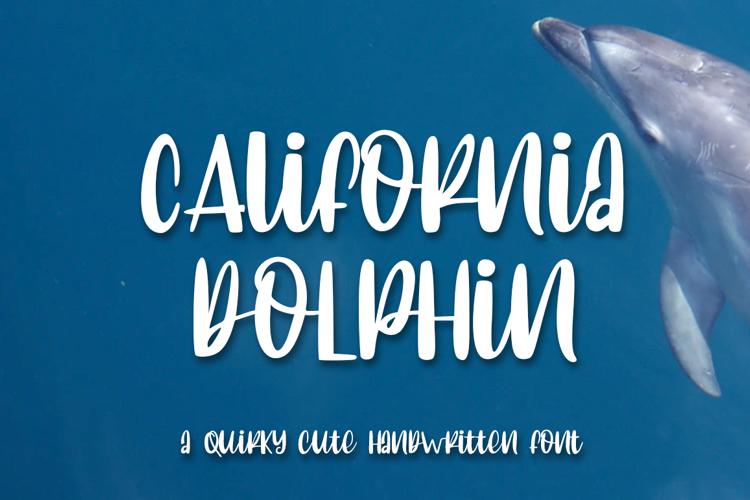 C Alifornia dolphin Font