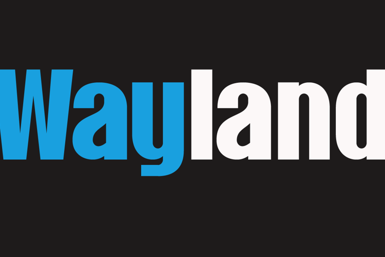 Wayland DEMO Font