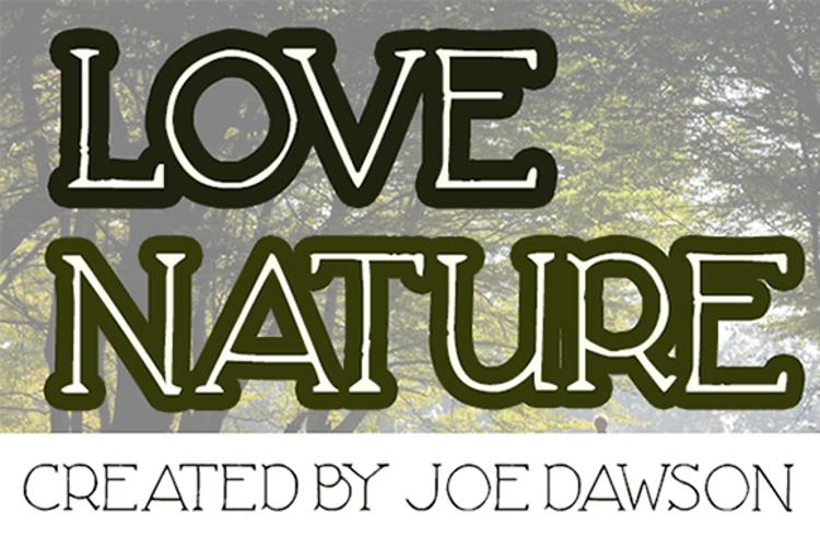 Love Nature Font