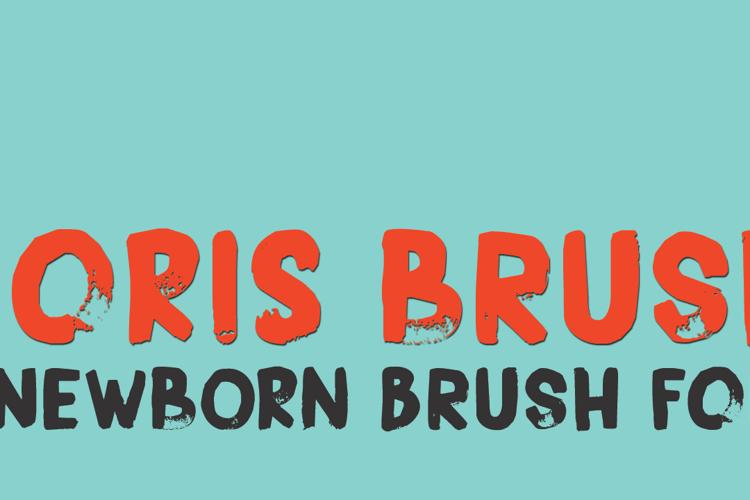 DK Boris Brush Font