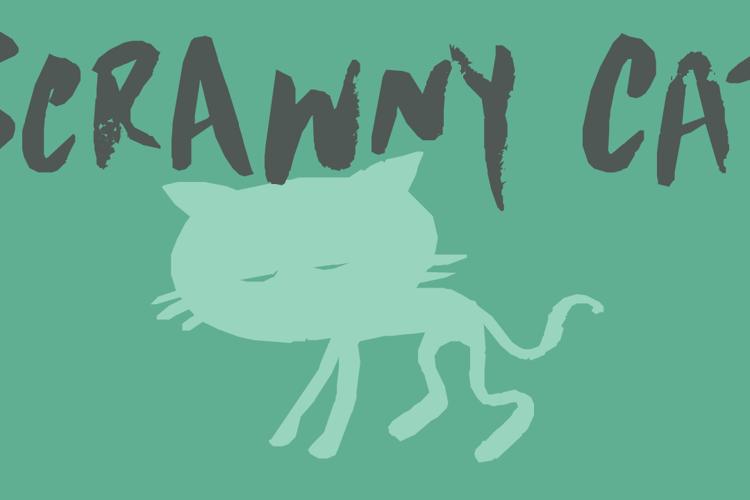 DK Scrawny Cat Font